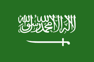 Saudi-Arabien: Bis zu 50 Mrd. für erneuerbare Energien